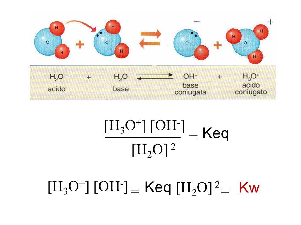 [H3O+] [OH-] [H2O] 2 = Keq [H3O+] [OH-] Keq [H2O] 2 Kw = =